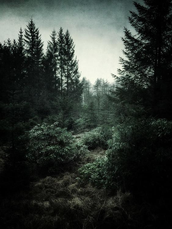 Glen Orchy & Glen Etive Julian Calverley photography _002