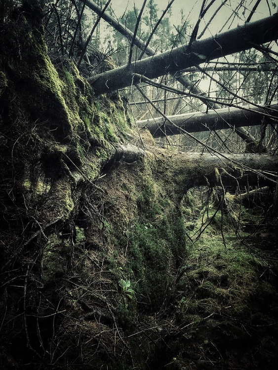 Glen Orchy & Glen Etive Julian Calverley photography _017