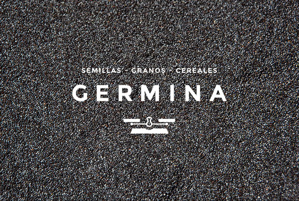 GERMINA branding by Savvy Studio AMS Design Blog_000