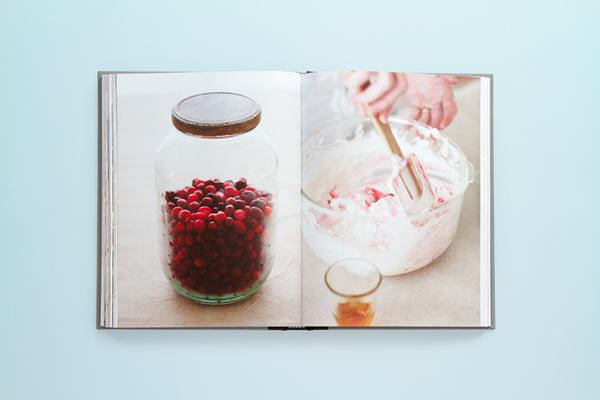 The Antarctic Book of Cooking and Cleaning Isabel Foo AMS Design Blog_012