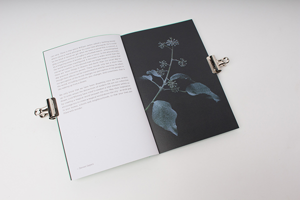 Passport Design Bureau The Wood Beneath The World on AMS Design Blog_005