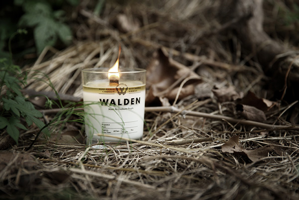 WALDEN Branding design on AMS Design Blog_001