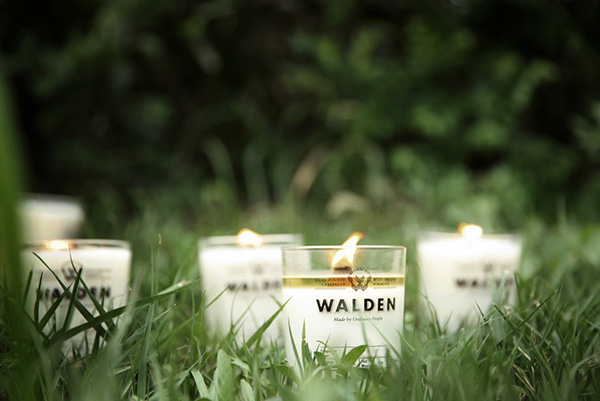 WALDEN Branding design on AMS Design Blog_002