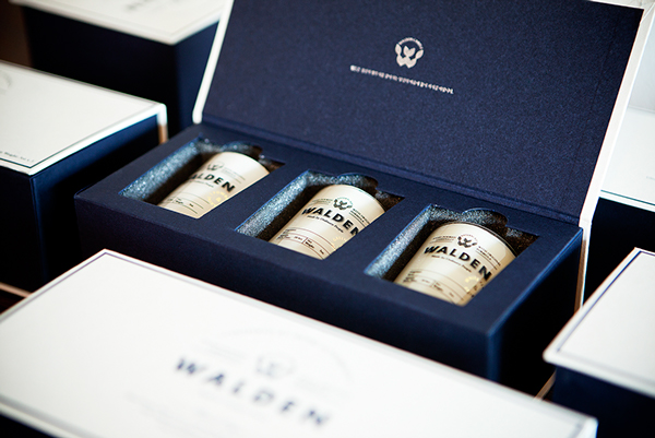 WALDEN Branding design on AMS Design Blog_013